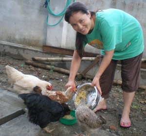 Gita feeding the hens